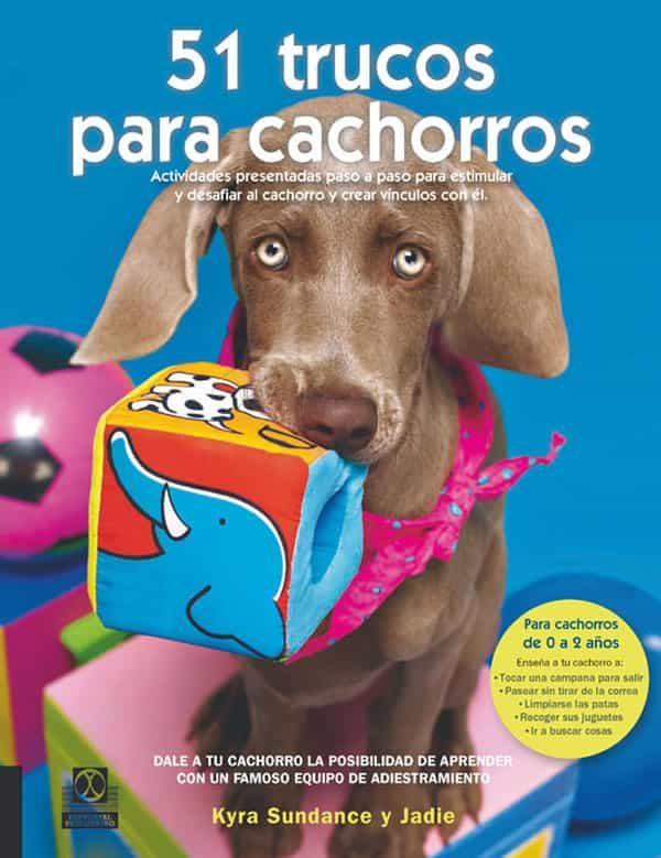 51 Trucos Para Cachorros: Actividades Presentadas Paso A Paso Par A Estimular Y Desafiar Al Cachorro Y Crear Vinculos Con El por Kyra Sundance