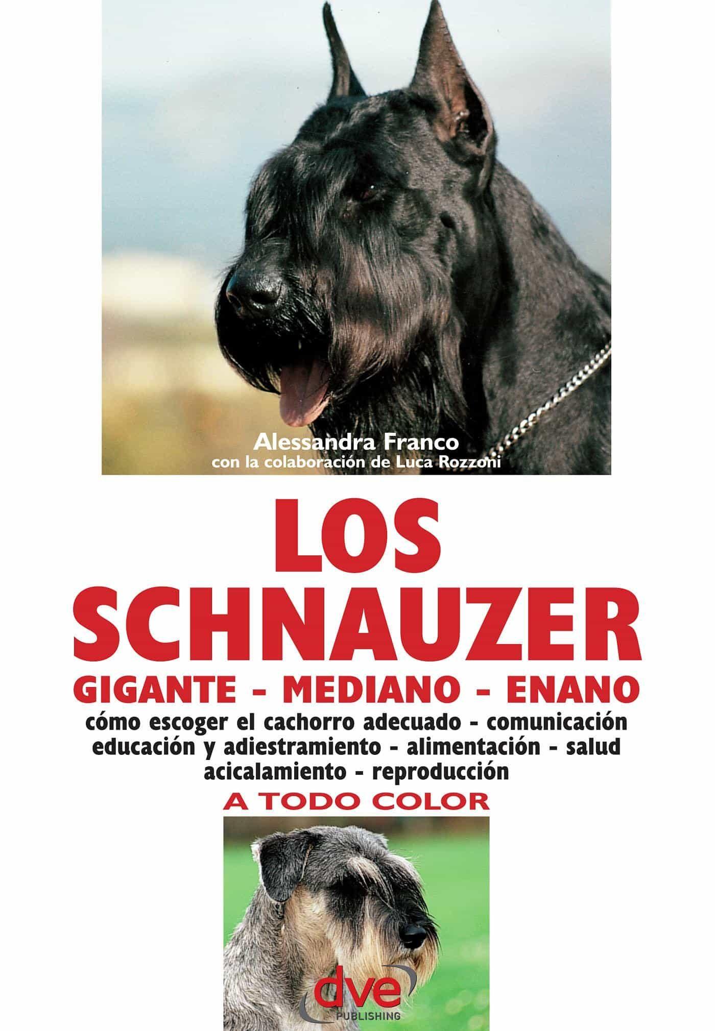 LOS SCHNAUZER: CÓMO ESCOGER EL CACHORRO ADECUADO - COMUNICACIÓN ...