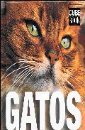 Gatos (cube Book) por Caterina Gromis epub