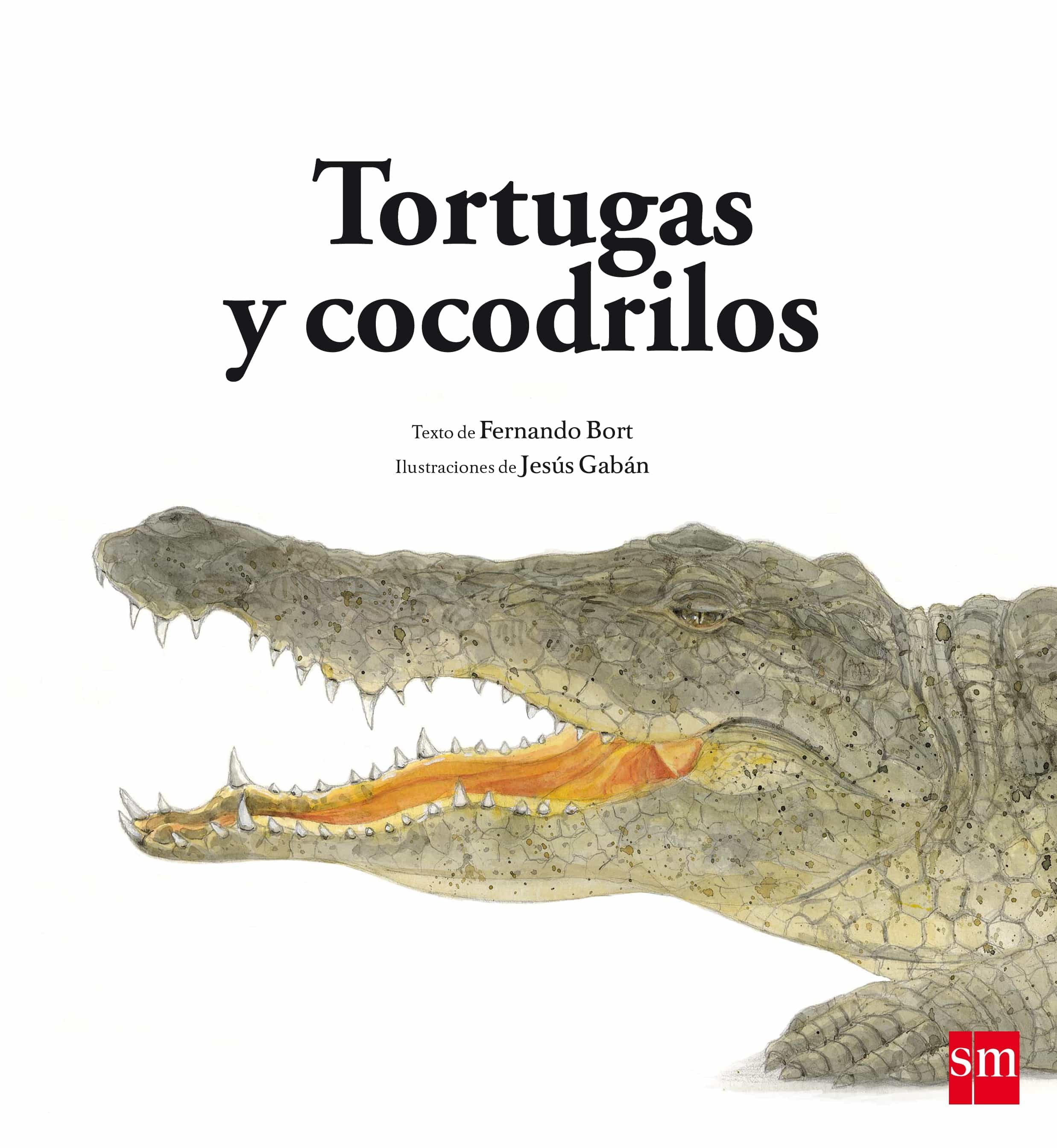 Tortugas Y Cocodrilos por Fernando Bort Misol