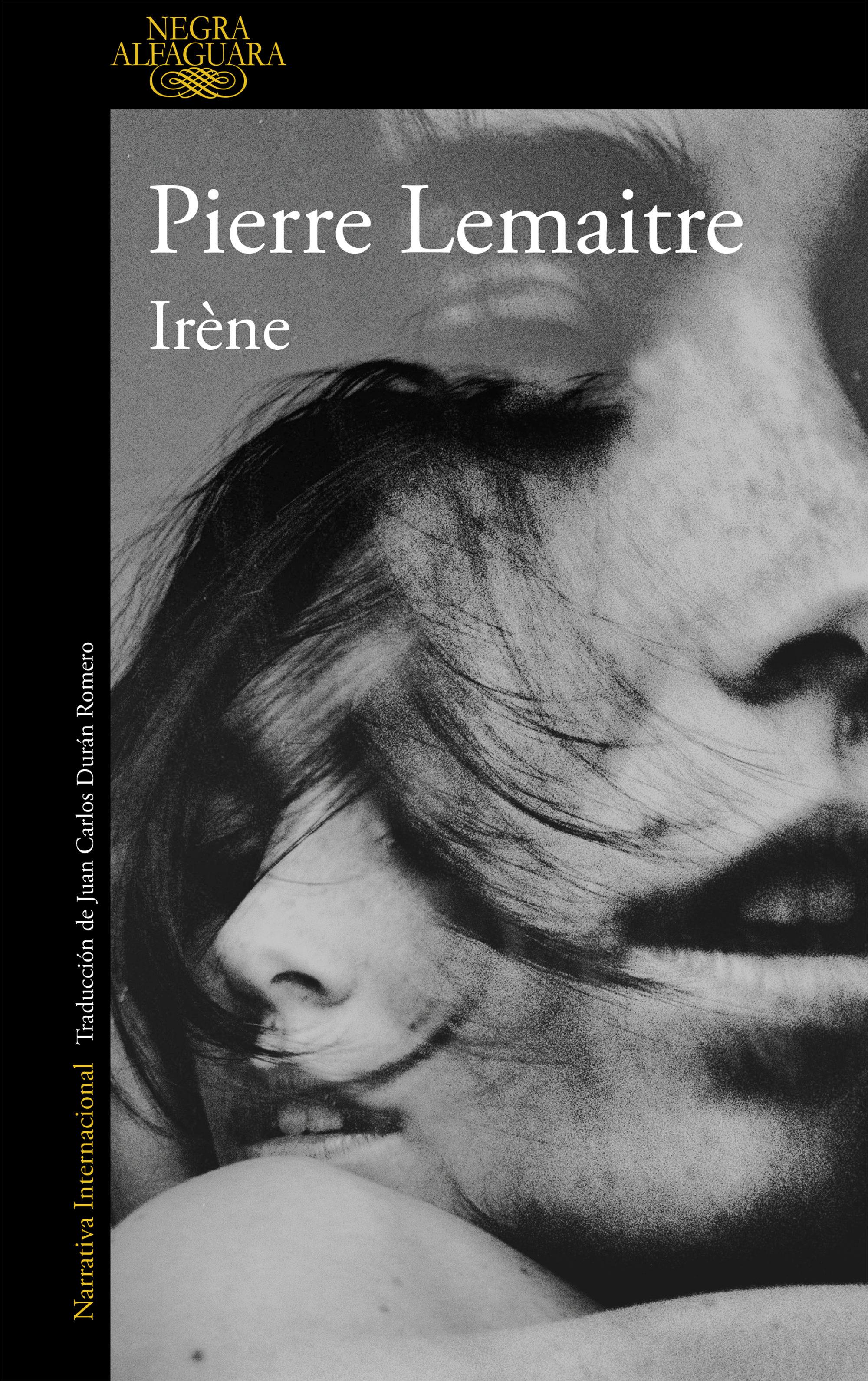 irène (un caso del comandante camille verhoeven 1) (ebook)-pierre lemaitre-9788420412177