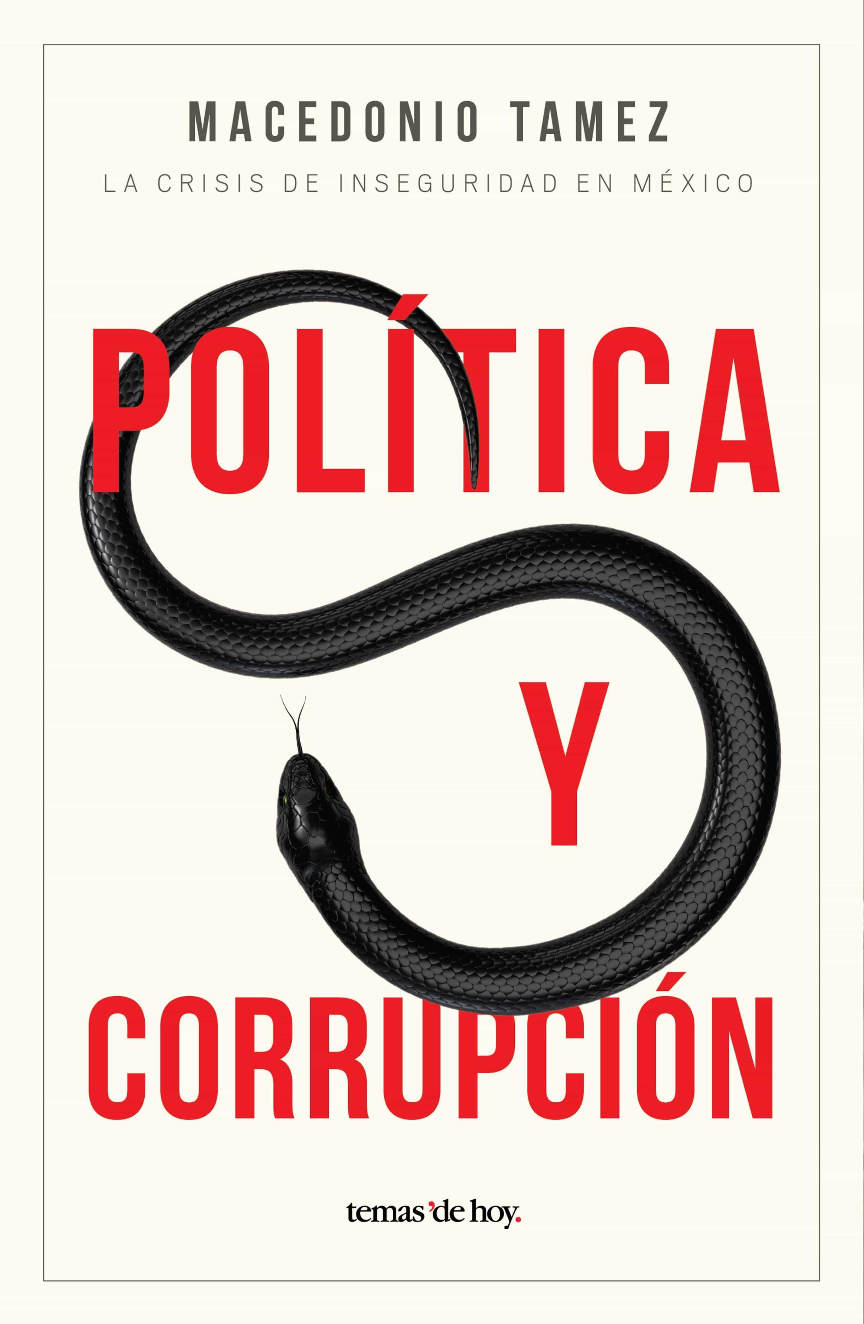 Resultado de imagen para politica y corrupcion macedonio tamez pdf