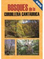 cordillera cantabrica, las mejores excursiones mario gutierrez rubio ernesto c. gutierrez tejon 9788495368607