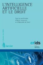 l'intelligence artificielle et le droit (ebook) 9782807902817
