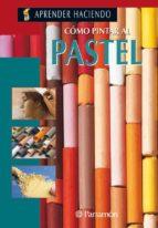 como pintar al pastel-salvador gonzalez olmedo-9788434209817