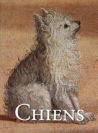 30 Cartes + enveloppes chiens Descargar el libro en alemán