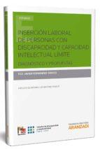 inserción laboral de personas con discapacidad y capacidad intelectual límite-francisco javier fernandez orrico-9788491523727