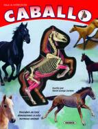 caballo (viaja al interior de un) 9788467706437