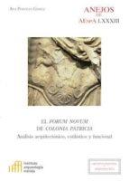 el forum novum de colonia patricia. análisis arquitectónico, estilístico y funcional (ebook)-ana portillo gómez-9788400103347