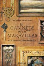 el gabinete de las maravillas-alfonso mateo-sagasta-9788490328057
