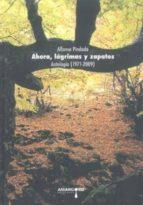 ahora, lagrimas y zapatos: antologia 1971 2009 alfonso indado 9788492560257