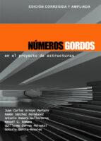 números gordos en el proyecto de estructuras (ebook)-juan carlos arroyo portero-9788493227067