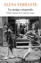 LA AMIGA ESTUPENDA (DOS MUJERES 1)
