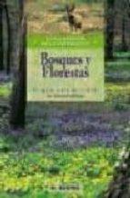bosques y florestas: ecoguia para descubrir la naturaleza-9788489840287