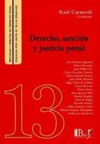 derecho, sanción y justicia penal raul carnevali rodriguez 9789974745087