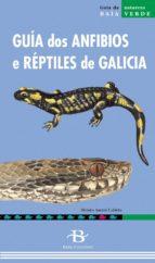 guia dos anfibios e reptiles de galicia moises asensi cabirta 9788496526297