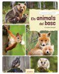 ELS ANIMALS DEL BOSC