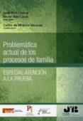 problematica actual de los procesos de familia-joan pico i junoy-9788494912337