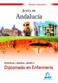 DIPLOMADO EN ENFERMERIA PERSONAL LABORAL GRUPO II DE LA JUNTA DE ANDALUCIA: TEMARIO. VOLUMEN II - 9788467622287 - VV.AA.