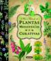 ATLAS ILUSTRADO DE LAS PLANTAS MEDICINALES Y CURATIVAS (EBOOK) VV.AA.