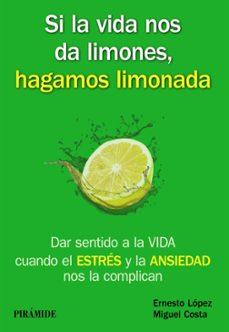 Viamistica.es Si La Vida Nos Da Limones, Hagamos Limonada Image