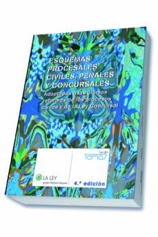 Ironbikepuglia.it Esquemas Procesales Civiles, Penales Y Concursales. 4ª Edicion. Image