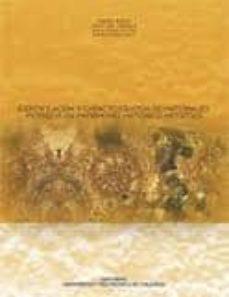 Carreracentenariometro.es Identificaciony Caracterizacion De Materiales Petreos En Patrim Onio Historico-artistico Image