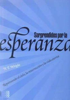 Alienazioneparentale.it Sorprendidos Por La Esperanza: Repensando El Cielo La Resurreccio N Y La Vida Eterna Image