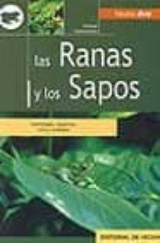 Titantitan.mx Las Ranas Y Los Sapos: Morfologia, Especies, Cria Y Cuidados Image