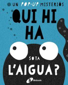 Cdaea.es Qui Hi Ha Sota L Aigua? Image
