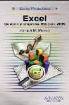 Srazceskychbohemu.cz Excel: Gestion Y Empresa (Ed. 2009) (Guia Practica) Image