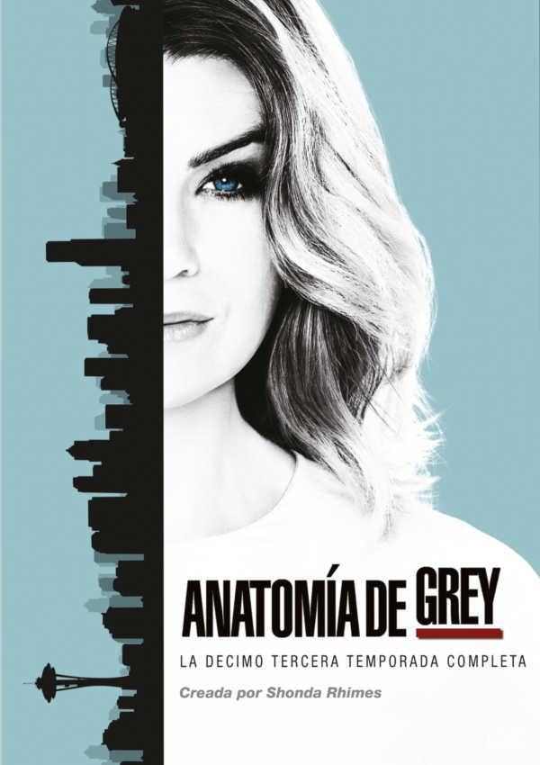 ANATOMIA DE GREY LA DECIMO TERCERA TEMPORADA COMPLETA - DVD - de ...